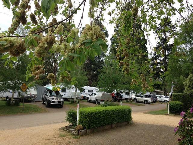 Caravan parks for sale western australia